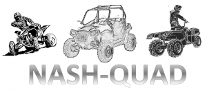 logo_Nash quad